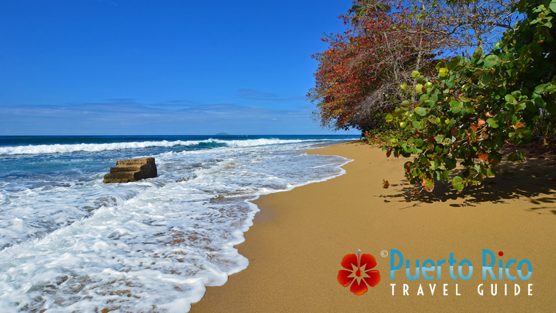Steps / Tres Palmas - Best snorkeling beaches in Puerto Rico