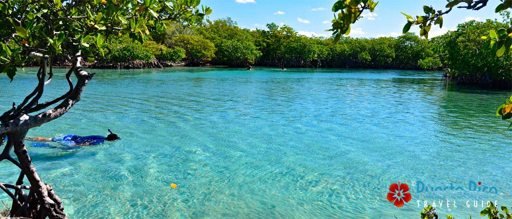 Gilligan's Island / Cayo Aurora - Puerto Rico Islands Guide