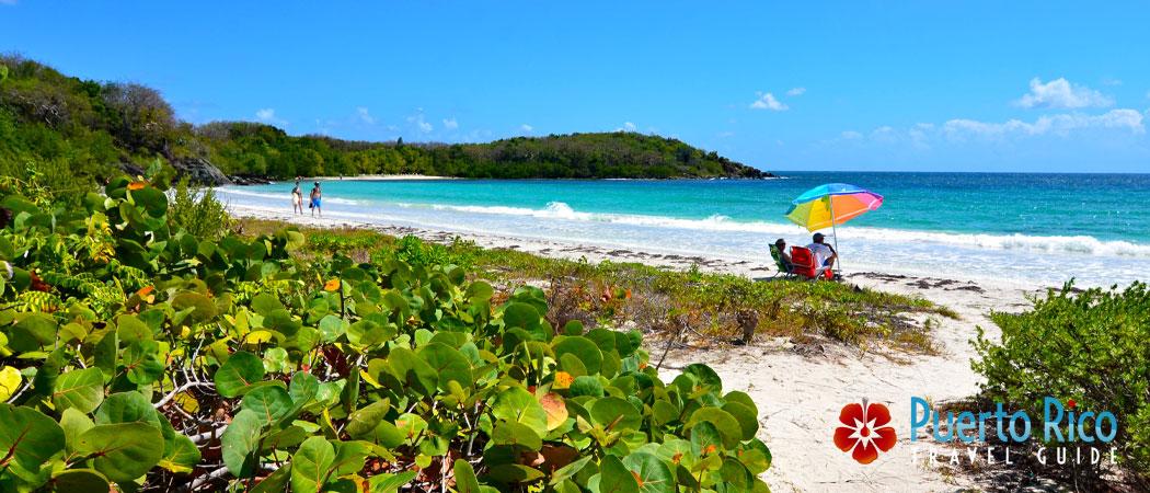 Vieques Island - Top Romantic Vacation Destinations in Puerto Rico