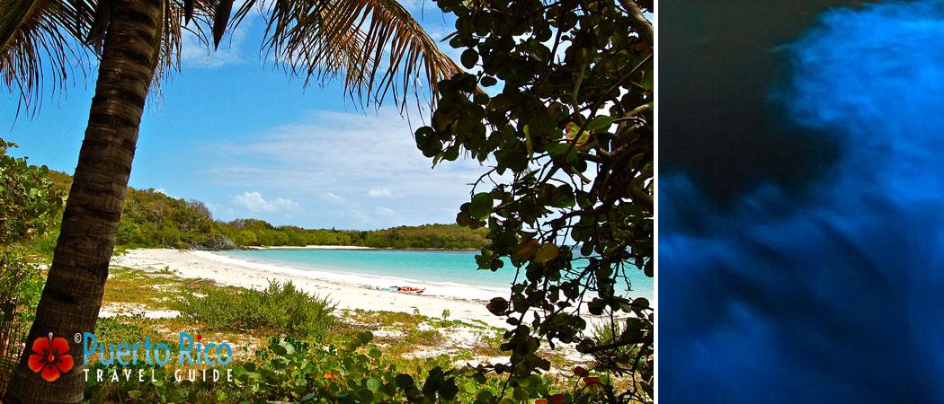 Vieques - Puerto Rico Islands