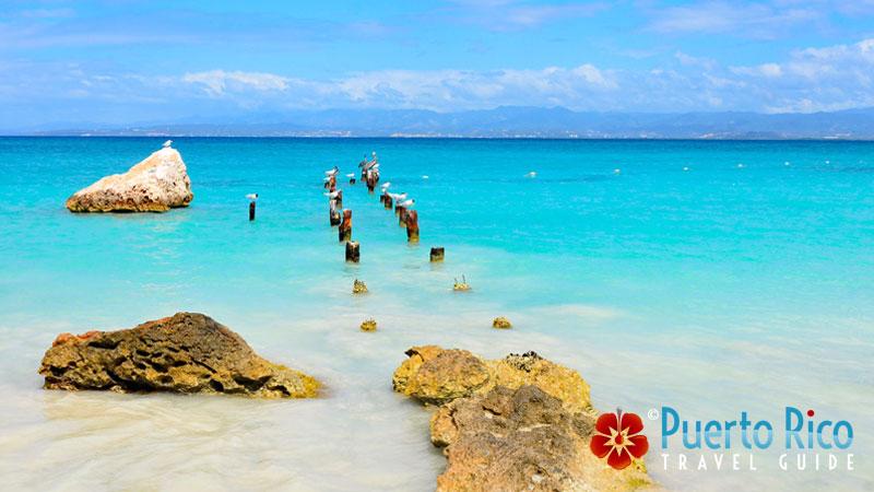 Caja de Muertos Island - Top Places to Visit in Puerto Rico