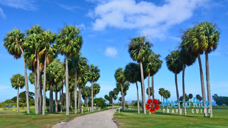 Golf course in Aguadilla, Puerto Rico