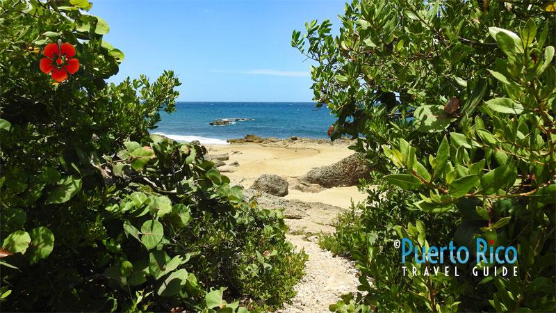 Tabletop Beach - Aguadilla, Puerto Rico