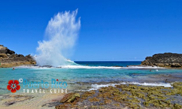 Puerto Rico North Coast Beaches <BR><h3>Visitor's Guide to The Best & Most Beautiful Beaches </h3>