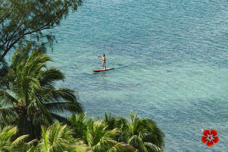 Paddleboarding in Condado Lagoon / Laguna de Condado - Condado, San Juan, Puerto Rico
