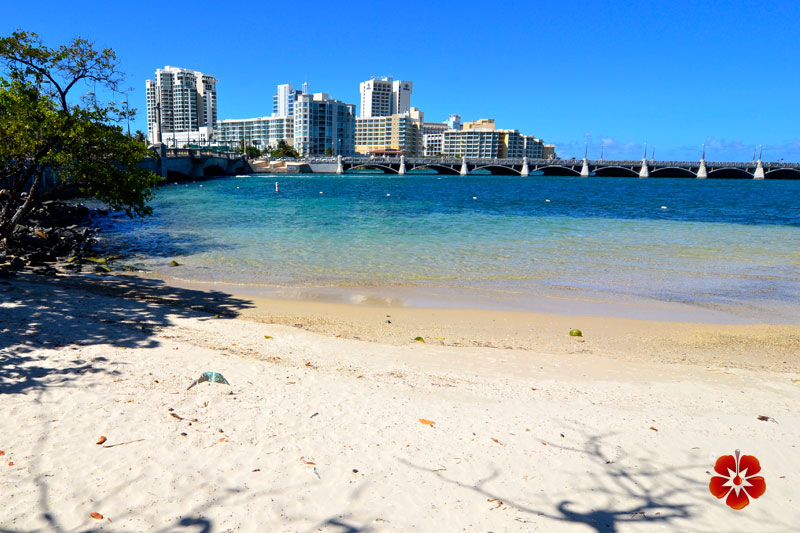 Condado Lagoon / Laguna de Condado - Condado, San Juan, Puerto Rico