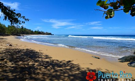Playa Domes – Beach in Rincon <BR>One of the Best Surfing Beaches in Puerto Rico