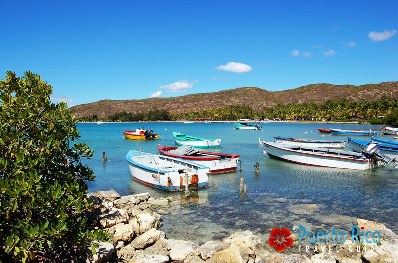 Colorful boats in Guanica near the ferry boat for Gilligan's Island - Puerto Rico