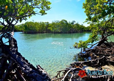 Gilligan's Island, Guanica, Puerto Rico