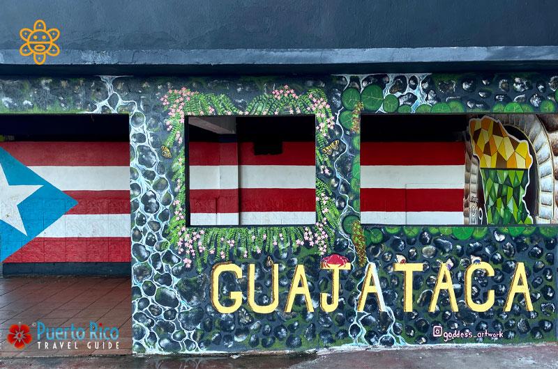 Art Wall - Guajataca Tunnel Park - Puerto Rico