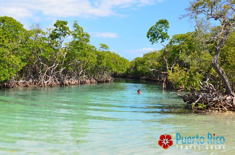 Swimming at Gilligan's Island - Guanica, Puerto Rico