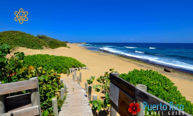 Playa Middles – Surfing Beach in Isabela, Puerto Rico