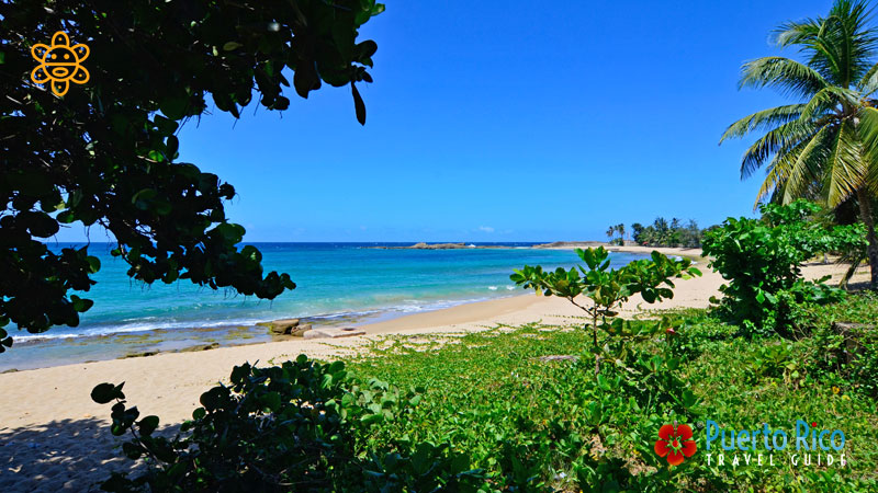 Sardinera Beach - Places to Visit & Things to Do in Isabela, Puerto Rico
