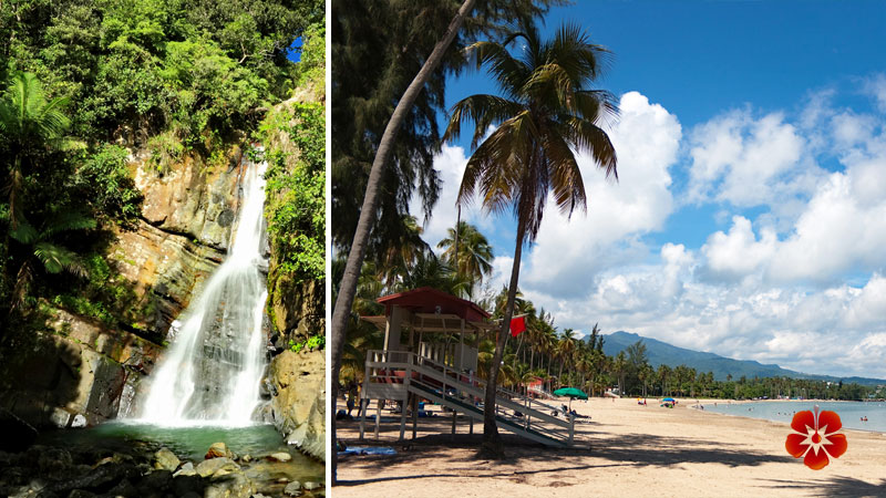 Best Tours from Isla Verde - El Yunque & Luquillo Beach