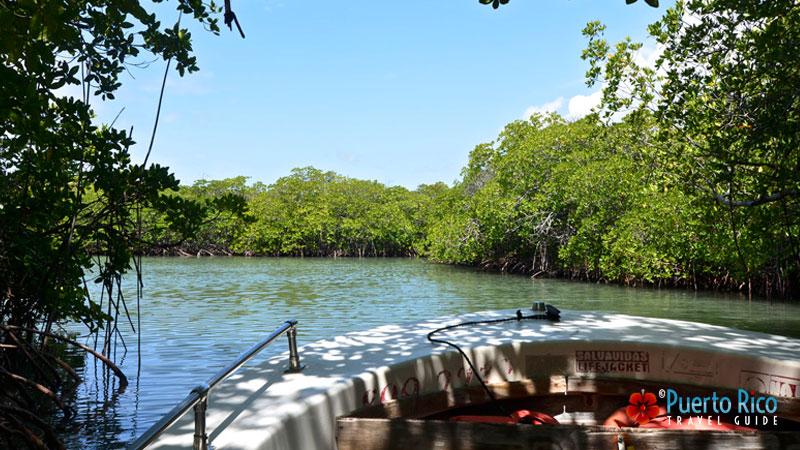 Lajas water taxis - La Parguera Natural Reserve - Lajas, Puerto Rico