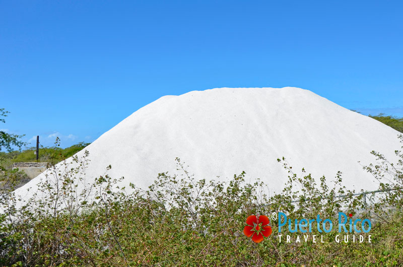 Las Salinas / The Salt Flats - Cabo Rojo, Puerto Rico