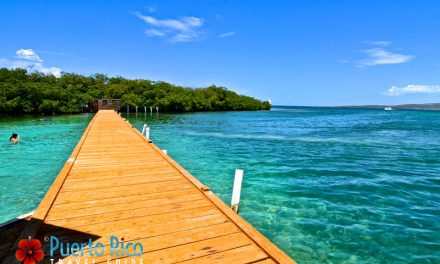 <center>Cayo Mata La Gata, Lajas, Puerto Rico <BR><h3>Visiting Guide, Top Tours, Map, Videos & Photo Gallery</h3></center>