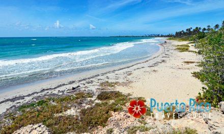 """Playa Ballena """"Bahia de las Ballenas"""" <BR><h3>Guanica, Puerto Rico</h3>"""