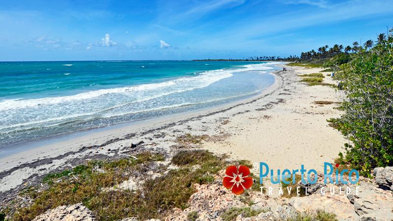 Playa Ballena - Guanica Puerto Rico