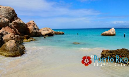 Playa Pelicano – Caja de Muertos Island <BR><h3>The Best Beach on the South Coast of Puerto Rico – Beach Guide & Top Tours</h3>