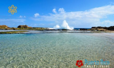Posita (Poza) Sardinera… Small & Marvelous Natural Pool – Isabela, Puerto Rico