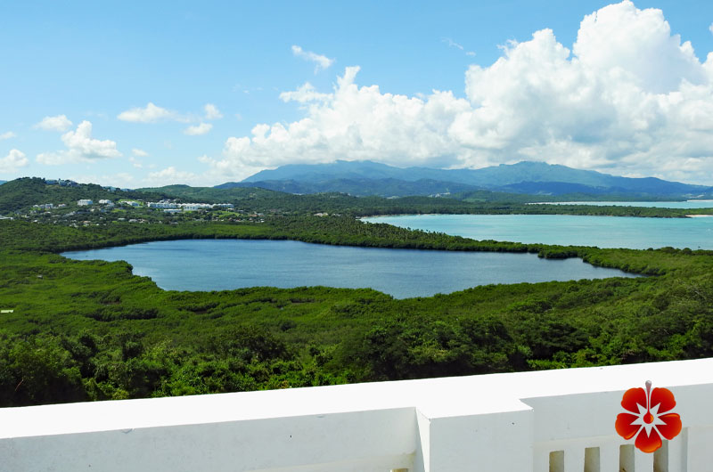 Cabezas de San Juan - Top Places to Visit - East Puerto Rico
