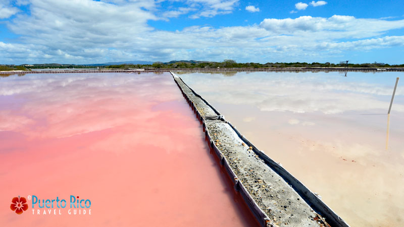 Las Salinas / Salt Flats - Best attractions / things to do in Puerto Rico