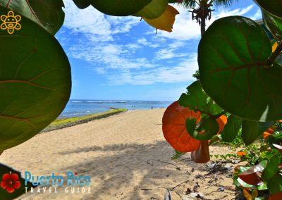 Shacks - Beautiful beaches in Puerto Rico
