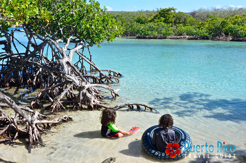 Gillgans's Island - One of the best beaches for families with kids in Puerto Rico