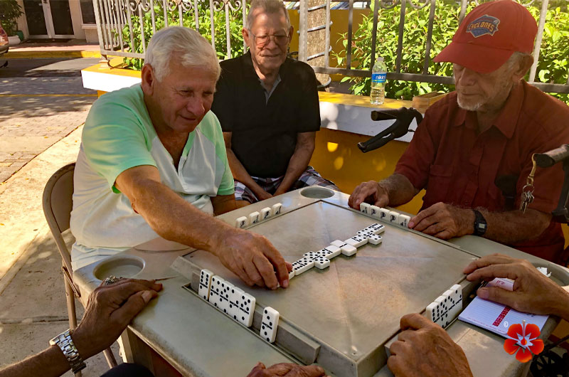 Playing Dominoes / Jugando Dominos - Puerto Rico Culture