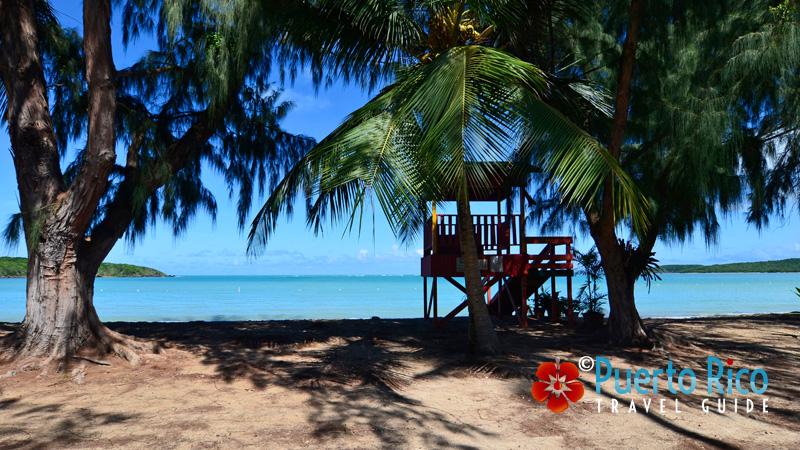 Seven Seas - Beaches on the East Coast of Puerto Rico