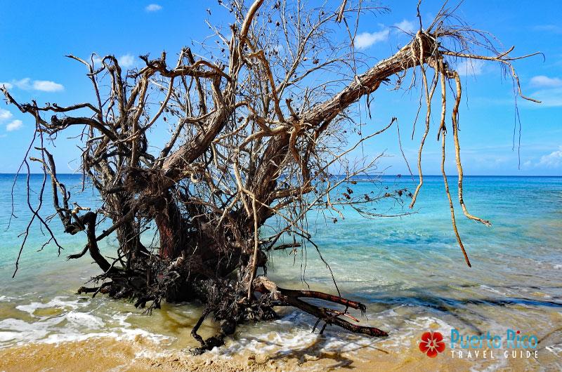 Crash Boat Beach after Hurricane Maria - Aguadilla, Puerto Rico