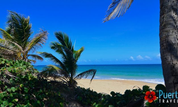 The Amazing Beaches of Isabela, Puerto Rico <BR><h3>The most complete guide to the best beaches… because we love them ! </h3>