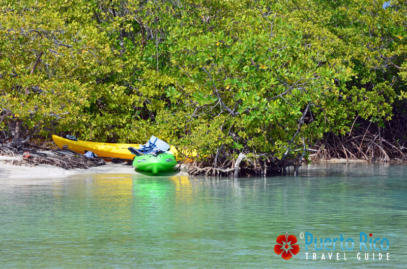 Kayaking is a favorite activity at Gilligan's Island, Guanica, Puerto Rico