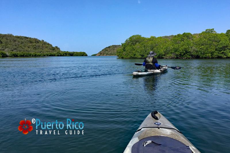 Kayaking at La Parguera, Lajas, Puerto Rico