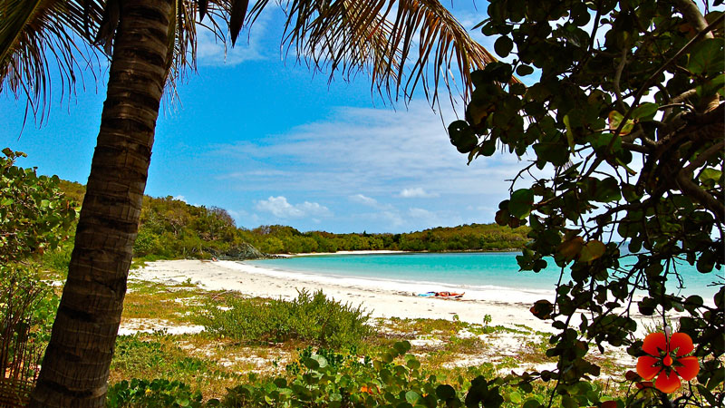Places to Go in Puerto Rico - Vieques