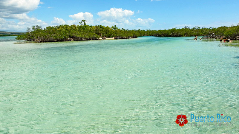 Gilligan's Island, Guanica - Puerto Rico's best places to visit in the west.