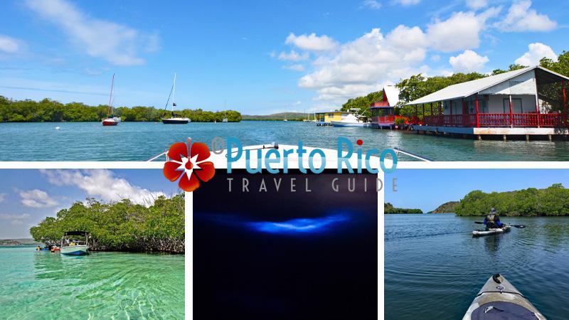 La Parguera - Lajas - Best Places to Visit in Puerto Rico - West Coast