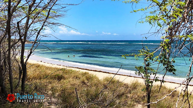 Playa Tamarindo - Puerto Rico Weather Guide - South Region
