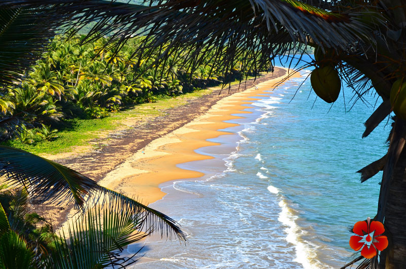 Punta Tuna Beach - Maunabo - Best Places to Visit in East Region of Puerto Rico