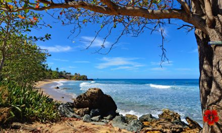 Playa Domes / Domes Beach – Rincon, Puerto Rico