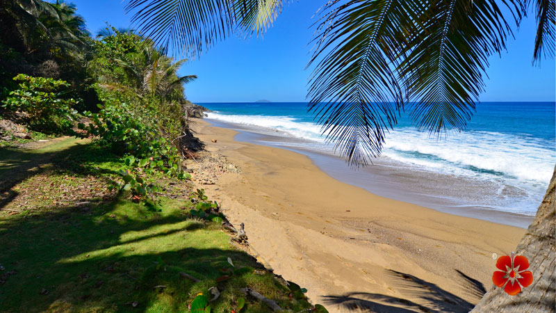 Spanish Wall - Best Beaches in Rincon, Puerto Rico