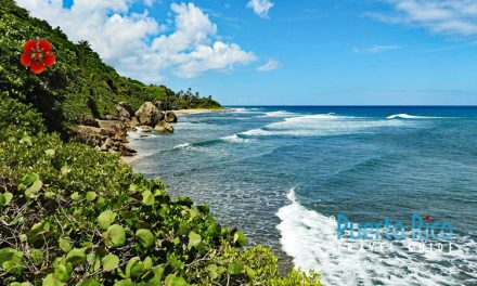 Surfer's Beach – Aguadilla, Puerto Rico – Beach Guide