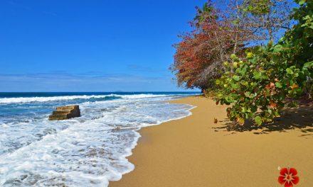 "Tres Palmas Beach ""Steps Beach"" – Rincon, Puerto Rico"