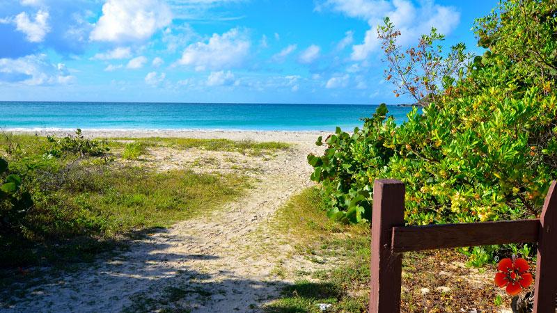 Caracas Beach - Best beaches in Vieques Island, Puerto Rico